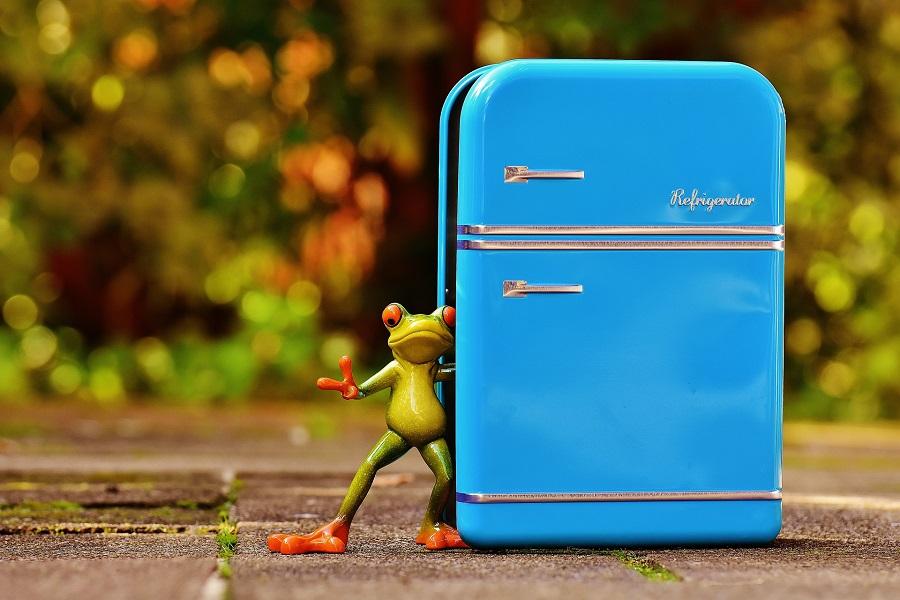 5 cose che forse non sapete sul Vostro frigorifero